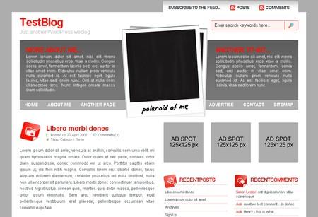 Polaroid WordPress theme