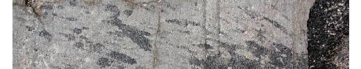 Free Texture Tuesday: Concrete