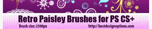 Retro Paisley Brushes
