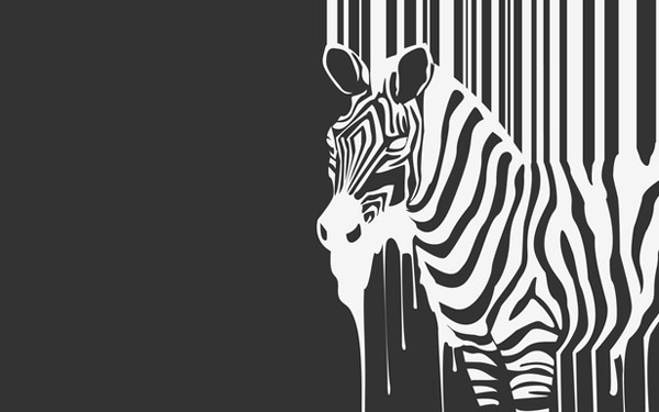 Zebra minimal wallpaper