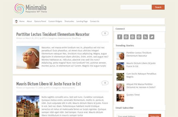 Minimalia WordPress Theme