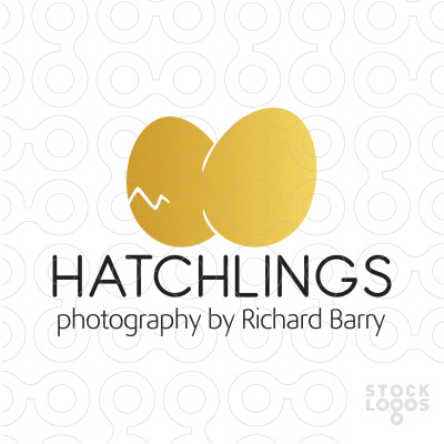 Hatchlings-Photography