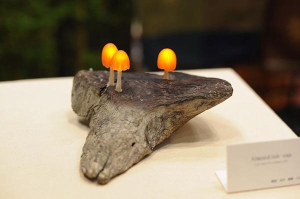 Mushroom LED lamps