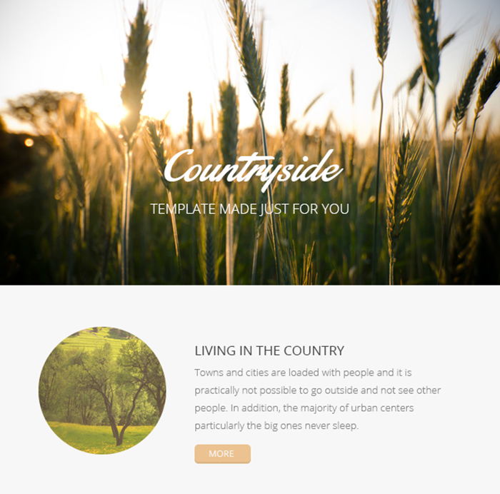 Countryside Email Template PSD