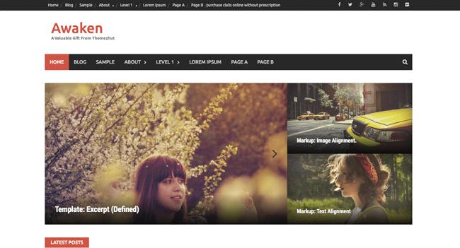 awaken_minimal wordpress themes