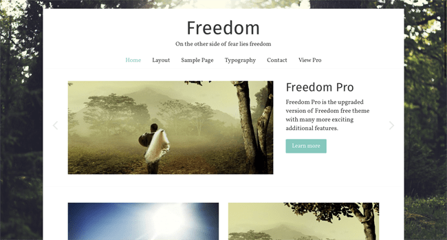 freedom_minimal wordpress themes