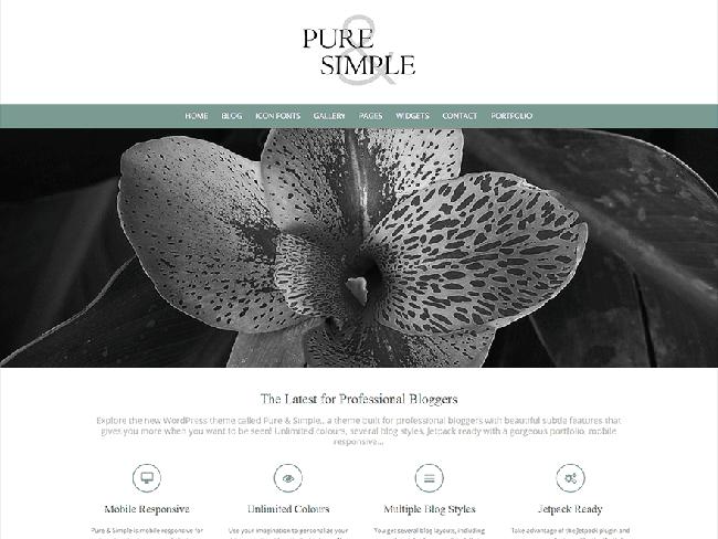 puresimple_minimal wordpress themes