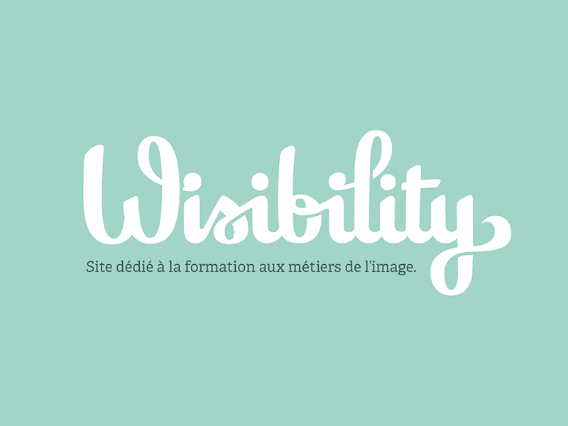 wisibility_dribbble
