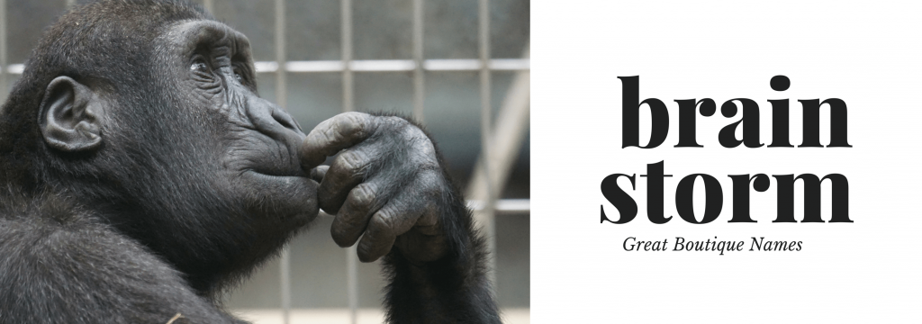 brainstorming a great name chimp