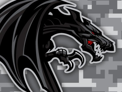 Ferocious black dragon