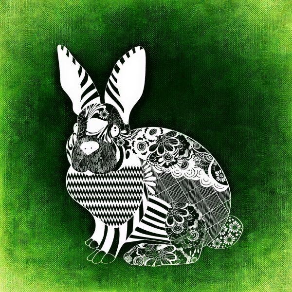 white rabbit abstract