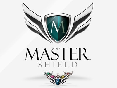 Master shield security