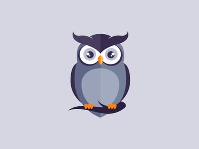 Wide-eyed owl design