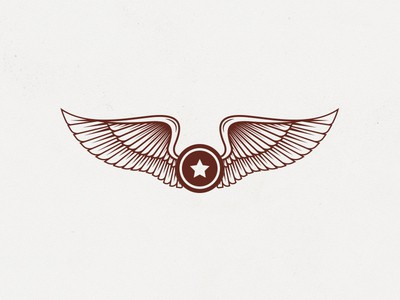 Wings and shield logo