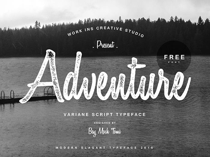 Variane Script Modern Font — Created in 2015 by Work Ins Studio